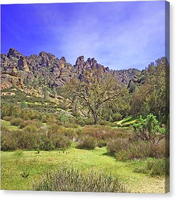 Canvas Print featuring the photograph Pinnacles National Park Watercolor by Art Block Collections