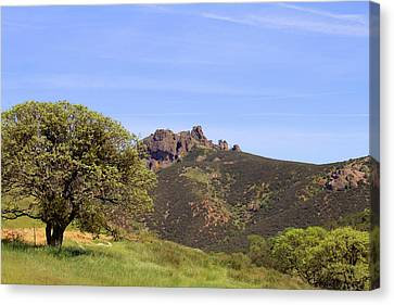 Canvas Print featuring the photograph Pinnacles Vista by Art Block Collections