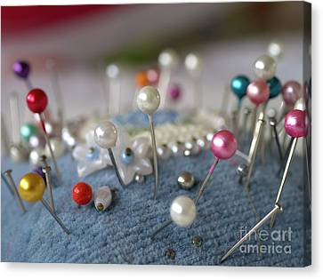 Pins And Needles Canvas Print by Gillian Singleton