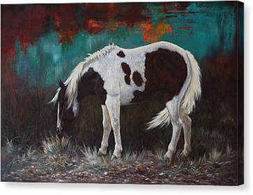 Pinto Canvas Print by Harvie Brown