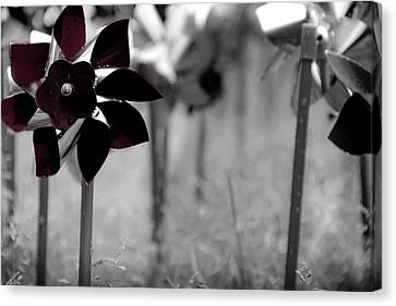 Pinwheels Canvas Print by Mamie Thornbrue