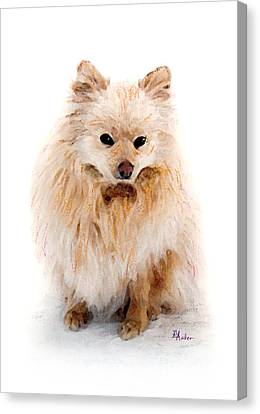Pip Canvas Print by Brent Ander