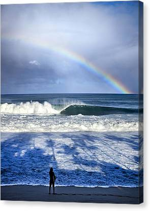 Pipe Rainbow Palms Canvas Print by Sean Davey