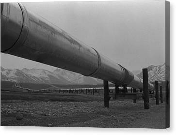 Pipeline Near Atigun Pass Brooks Canvas Print by Everett
