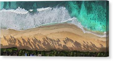 Clean Water Canvas Print - Pipeline Palms by Sean Davey