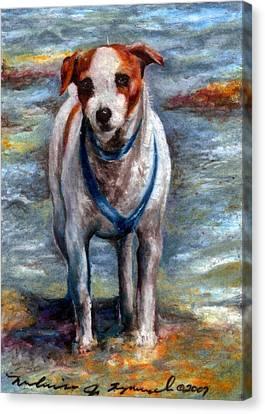 Piper On The Beach Canvas Print by Melissa J Szymanski
