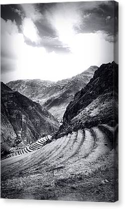 Pisac Fields Canvas Print