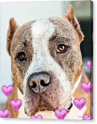 Pit Bull Dog - Pure Love Canvas Print by Sharon Cummings