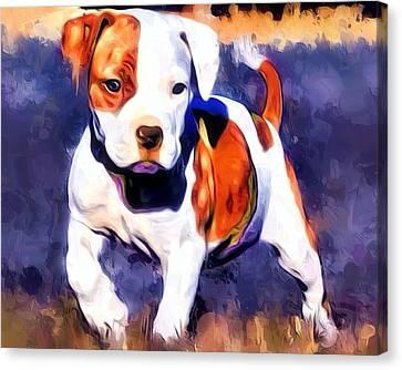 Pit Bull Pup Portrait Canvas Print by Scott Wallace