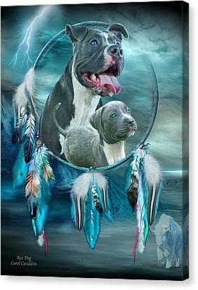 Bulls Canvas Print - Pit Bulls - Rez Dog by Carol Cavalaris