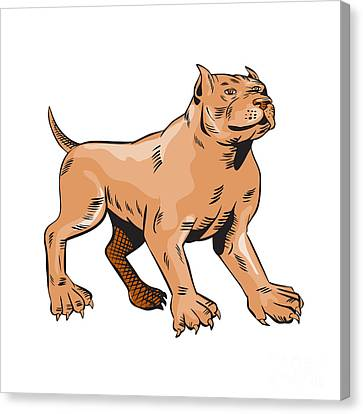 Pitbull Dog Mongrel Standing Etching Canvas Print