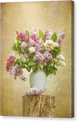 Pitcher Of Lilacs Canvas Print