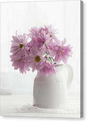 Pitcher Of Pink Canvas Print
