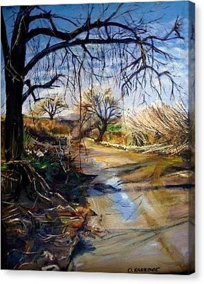 Placerita Creek 1 Canvas Print by Olga Kaczmar