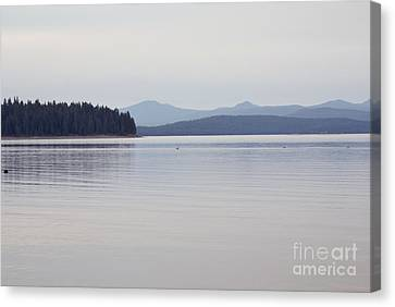 Placid Mountain Lake Canvas Print by Cindy Garber Iverson
