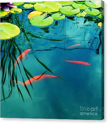 Plaisir Aquatique Canvas Print