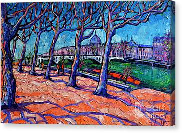 Plane Trees Along The Rhone River - Spring In Lyon Canvas Print by Mona Edulesco
