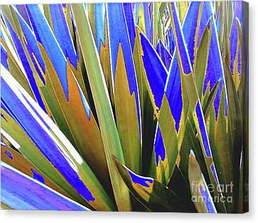 Canvas Print featuring the photograph Plant Burst - Blue by Rebecca Harman