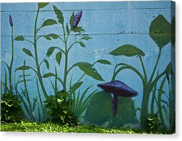 Plant Mural With Live Plants Canvas Print by Mark Weaver