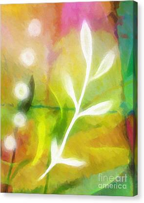 Plant Of Light Canvas Print by Lutz Baar