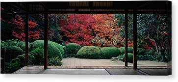 Plants And Maple Trees Viewed Canvas Print by Panoramic Images