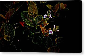 Plants In Abstract 19 Canvas Print