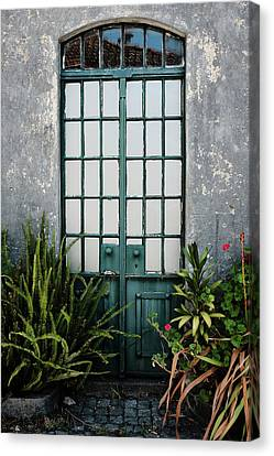 Canvas Print featuring the photograph Plants In The Doorway by Marco Oliveira