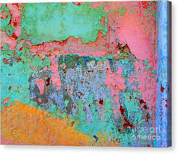 Plaster Abstract 8 By Michael Fitzpatrick Canvas Print by Mexicolors Art Photography