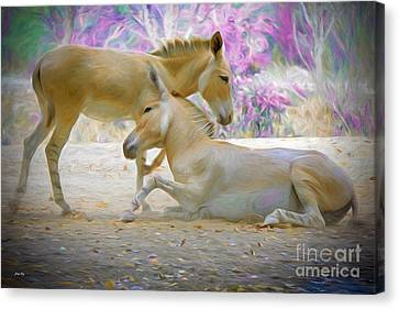 Play Time Edition 2 Canvas Print by Judy Kay