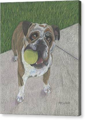 Play With Me Canvas Print by Arlene Crafton