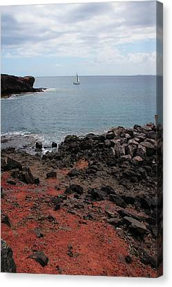 Canary Canvas Print - Playa Blanca - Lanzarote by Cambion Art
