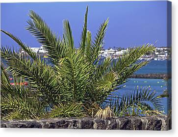 Lanzarote Canvas Print - Playa Blanca by Tony Murtagh