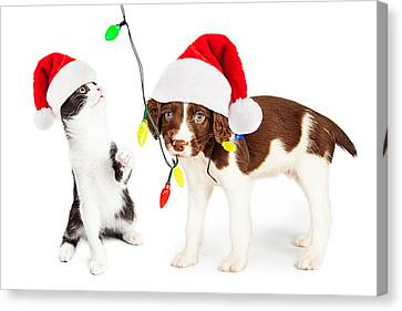 Playful Christmas Kitten And Puppy Canvas Print