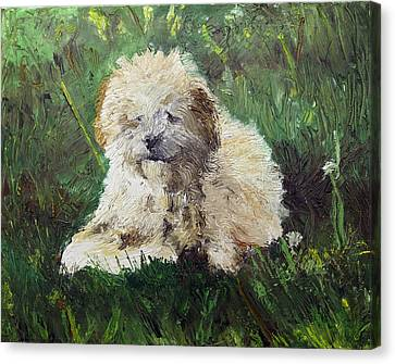 Playful Companion Canvas Print by Pradeep Bangalore