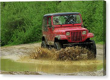 Playing In The Mud Canvas Print by Scott Hovind