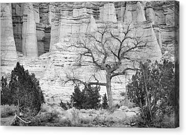 Cliff Lee Canvas Print - Plaza Blanca New Mexico by Mary Lee Dereske
