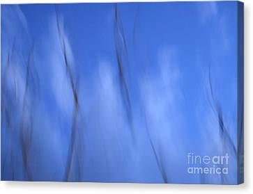 Pleats Of Time 2 Canvas Print by Eva Maria Nova