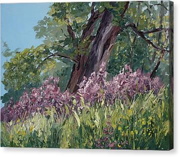 Fuschia Canvas Print - Plein Air Purple by Mary Giacomini