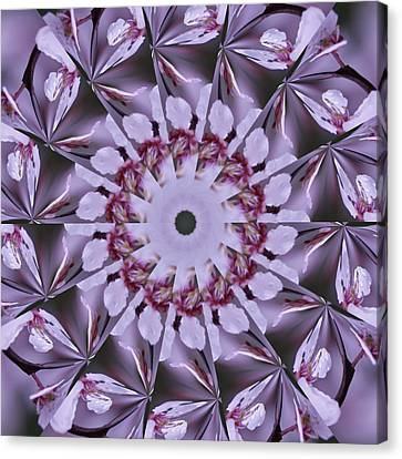 Canvas Print featuring the photograph Plum Tree Kaleidoscope by Bill Barber