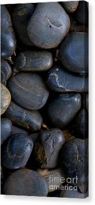 Plumeria Pebbles  - Part 1 Canvas Print by Sean Davey