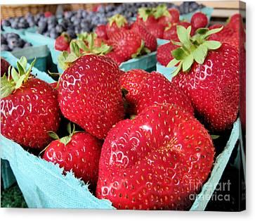 Plump Strawberries Canvas Print by Janice Drew