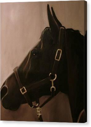 Pocketchange Canvas Print by Donna Thomas