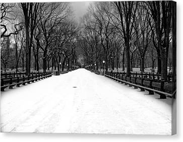 Poet's Walk In Snow Canvas Print