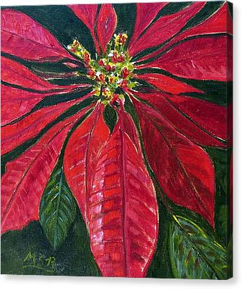 Poinsettia Closeup Canvas Print by Maria Soto Robbins