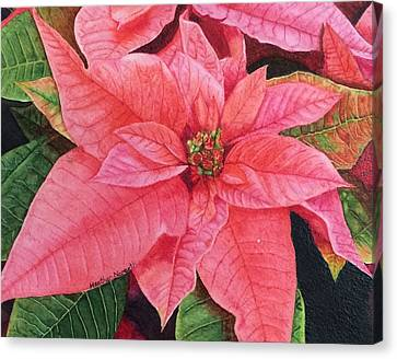 Hyperrealistic Canvas Print - Poinsettia  by Heather Norseth
