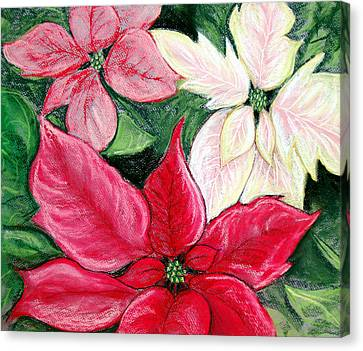 Poinsettia Pastel Canvas Print by Nancy Mueller