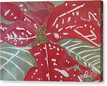 Poinsettia Time Canvas Print