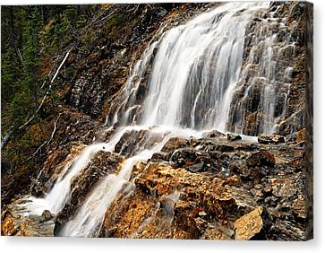 Point Lace Falls 1 Canvas Print by Larry Ricker