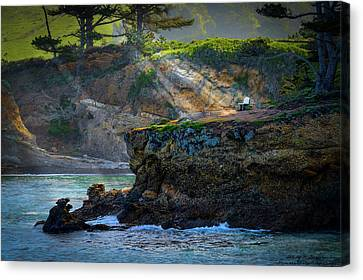 Whalers Cove Canvas Print - Point Lobos, Calif. A Missed Opportunity by Wendy Seagren