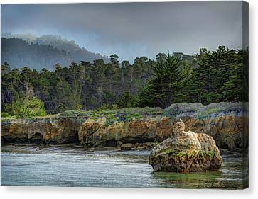 Whalers Cove Canvas Print - Point Lobos, Calif. Whaler's Cove by Wendy Seagren